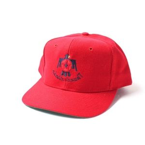 Other - Thunderbirds Hat Cap Air Force Red Snapback